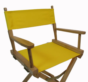 CLEARANCE: Director's Chair Replacement Seat/Back Set